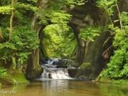 Du lịch - Khám phá khe suối đẹp như chốn thần tiên ở Nhật