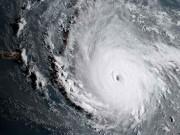 Siêu bão  quái vật  khiến hòn đảo Caribe không sống nổi