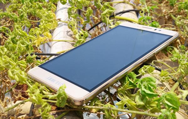 Đổ xô đi mua smartphone giá chưa đến 1,5 triệu đồng - 3
