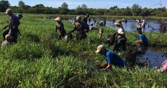 """Độc đáo lễ hội """"phá trằm"""" lội bùn bắt cá ở Quảng Trị - 2"""