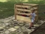Tranh vui - Những hình ảnh khiến ai cũng muốn có con