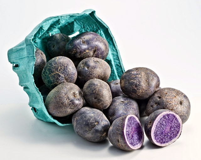 Vén màn bí mật màu sắc tím, đỏ, xanh, đen... của các loại khoai tây - 2