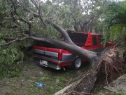 Thế giới - Florida tan hoang xơ xác sau khi siêu bão Irma càn quét