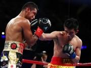 Thể thao - Chấn động boxing: Võ sỹ nhặt rác Thái Lan hạ nhà vô địch 4 hạng cân