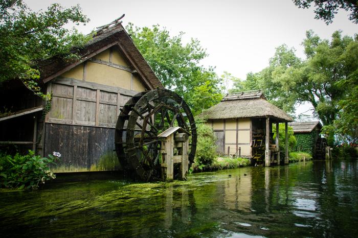 Có một ngôi làng xanh mát, trong lành và bình yên đến lạ ở Nhật Bản - ảnh 3