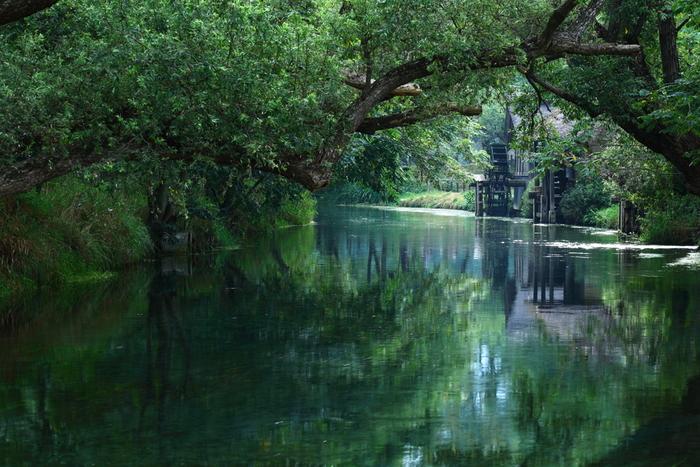 Có một ngôi làng xanh mát, trong lành và bình yên đến lạ ở Nhật Bản - ảnh 1