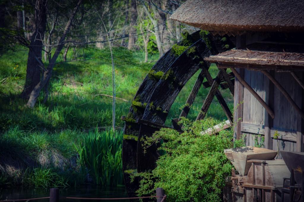 Có một ngôi làng xanh mát, trong lành và bình yên đến lạ ở Nhật Bản - ảnh 4