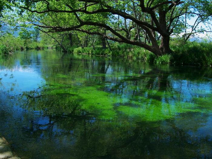 Có một ngôi làng xanh mát, trong lành và bình yên đến lạ ở Nhật Bản - ảnh 8