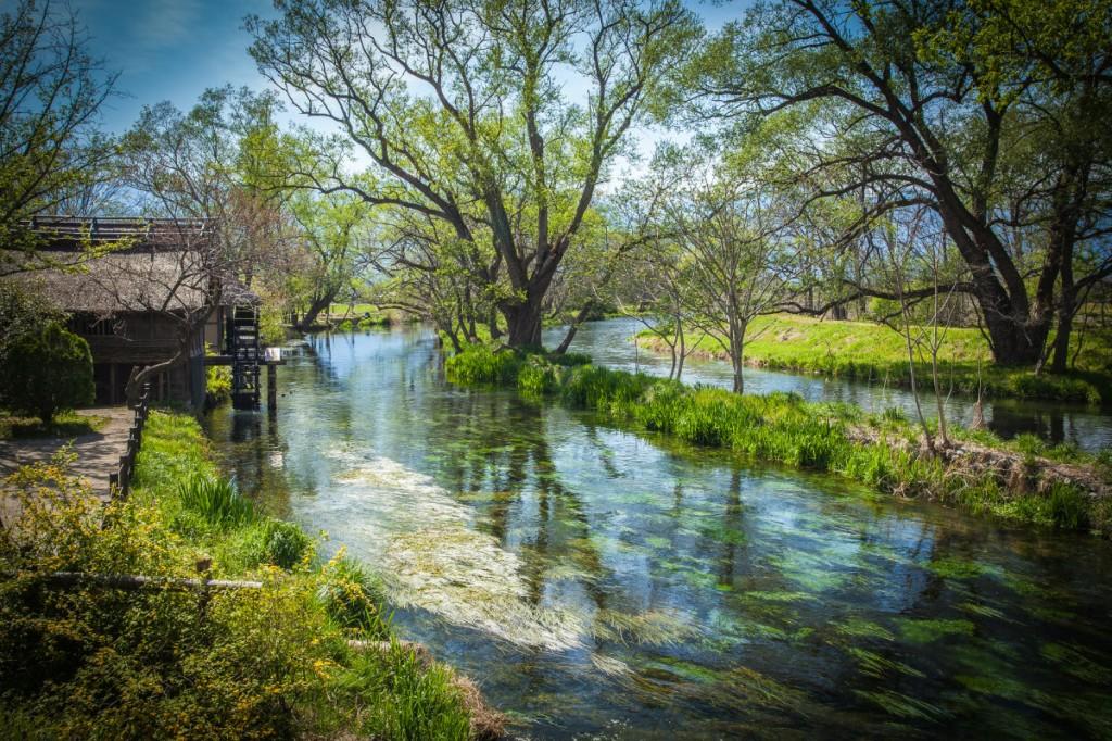 Có một ngôi làng xanh mát, trong lành và bình yên đến lạ ở Nhật Bản - ảnh 12