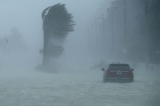 """Mỹ: Đàn cá mập bơi lội trên phố sau siêu bão """"quái vật""""? - ảnh 2"""