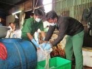 Hết cửa kinh doanh thịt bẩn
