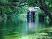 Du lịch - Có một ngôi làng xanh mát, trong lành và bình yên đến lạ ở Nhật Bản
