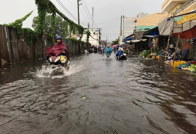 Bão số 10 bất ngờ gây mưa lớn, cây đổ, đường ngập ở TP.HCM - ảnh 4