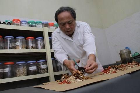 Loại quả dại ở Việt Nam lại là dược liệu quý như vàng ở Nhật Bản - 1