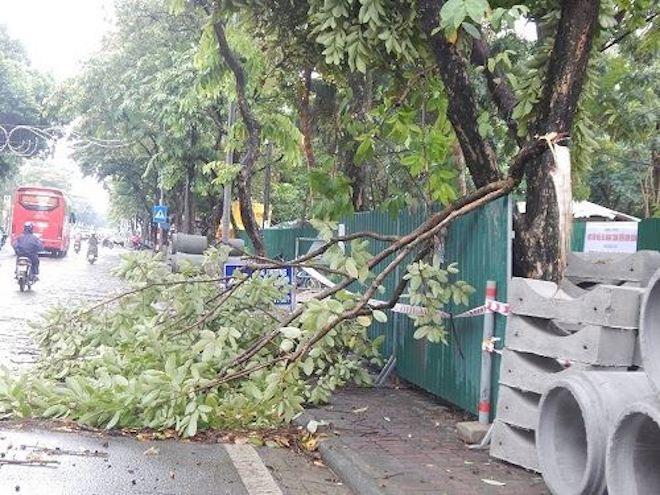 CẬP NHẬT bão số 10 ngày 14/9: Bão chưa đổ bộ đã có 2 người chết, mất tích - 15