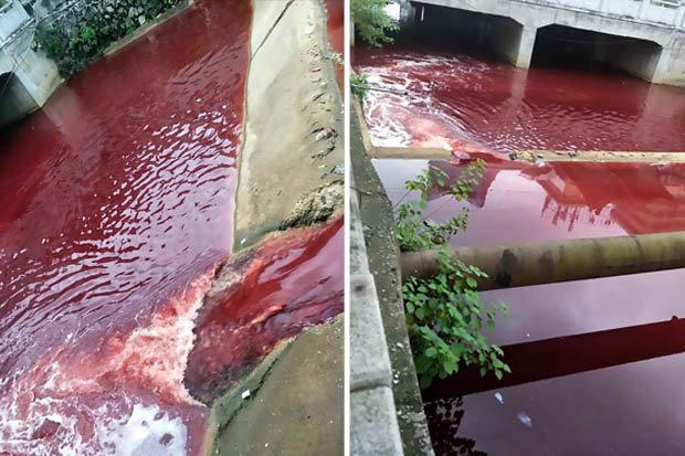 Dòng sông bất ngờ nhuộm đỏ máu tại thành phố Trung Quốc - ảnh 1