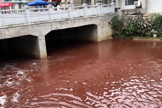 Dòng sông bất ngờ nhuộm đỏ máu tại thành phố Trung Quốc - ảnh 2