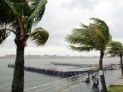 Tin tức trong ngày - CẬP NHẬT bão số 10: Miền Trung cấm biển, miền Nam mưa như trút nước