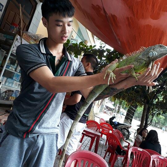 Hot boy 9X Yên Bái chơi thú cưng rồng Nam Mỹ độc, lạ dài cả mét - ảnh 2