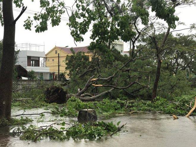 CẬP NHẬT bão số 10: Bão đổ bộ, tháp truyền hình cao 100m đổ sập - 5