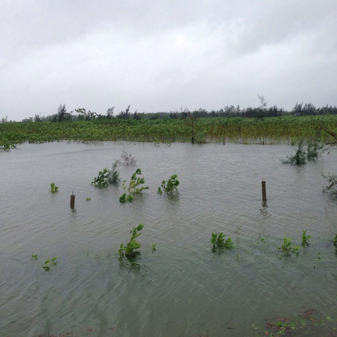 Nghệ An: Nước tràn đê, thủy điện xả lũ, di dời dân khẩn cấp - 3