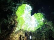 Phát hiện hang động hình trái tim ẩn mình trong khu rừng ngàn năm tuổi