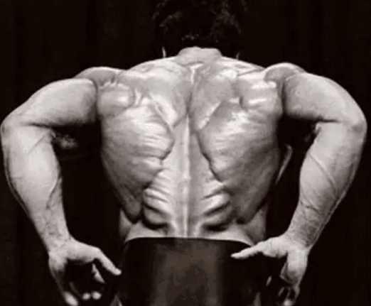 """Lý giải về cơ lưng đẳng cấp """"hình cây thông"""" của Lý Tiểu Long - 1"""