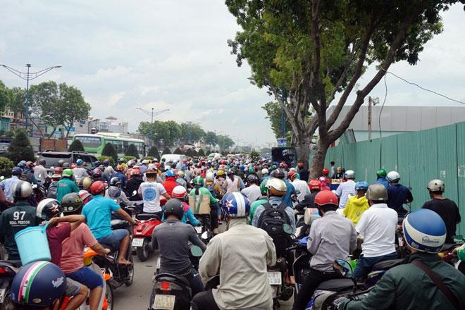 """Xóa sổ """"chợ"""" sinh vật cảnh lớn nhất SG, giao thông tê liệt từ sáng đến trưa - 6"""