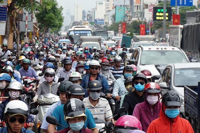 """Xóa sổ """"chợ"""" sinh vật cảnh lớn nhất SG, giao thông tê liệt từ sáng đến trưa - 11"""