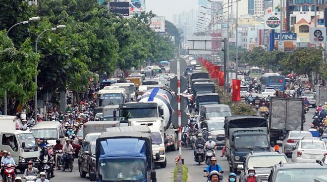 """Xóa sổ """"chợ"""" sinh vật cảnh lớn nhất SG, giao thông tê liệt từ sáng đến trưa - 10"""