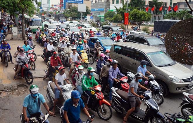 """Xóa sổ """"chợ"""" sinh vật cảnh lớn nhất SG, giao thông tê liệt từ sáng đến trưa - 12"""