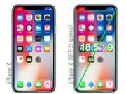Dế sắp ra lò - Màn hình của iPhone X lớn cỡ nào?
