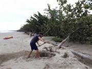 Tin tức trong ngày - Sau bão số 10: Cát phủ kín khu du lịch Cửa Lò, đê kè ven biển Quất Lâm tan nát
