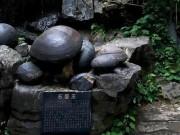 Kỳ lạ vách đá  đẻ trứng  suốt bao năm qua ở Trung Quốc