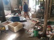 Hà Nội: Nguy cơ  ổ bệnh  tồn tại 13 năm ngay cạnh trụ sở phường