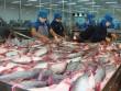 30 năm phát triển, xuất khẩu 2 tỷ USD, cá tra Việt vẫn  vô danh