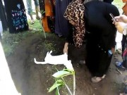 Mèo trắng quằn quại, cào cấu không chịu rời mộ người chết