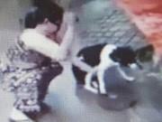 Tìm ra người phụ nữ chặt chân chó gây phẫn nộ