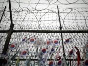 """Hàn Quốc vẫn tiếp tục gửi  """" tặng """"  Triều Tiên 8 triệu USD"""