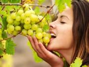 4 loại trái cây mùa thu tươi ngon, rất tốt cho sức khỏe