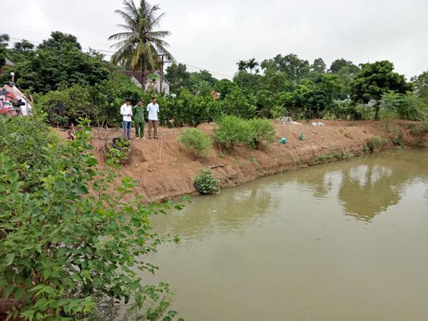 Làm giàu ở nông thôn: Mát mắt vườn bưởi hồng Quang Tiến bạc triệu xứ Nghệ - 3