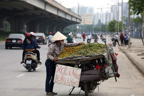 Hà Nội: Truy xuất nguồn gốc, dẹp buôn bán trái cây trên vỉa hè? - 1