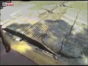 Kinh dị mặt đường  thở phập phồng  sau động đất Mexico
