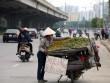 Hà Nội: Truy xuất nguồn gốc, dẹp buôn bán trái cây trên vỉa hè?