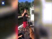 Chó khổng lồ  ngứa mắt  đẩy chủ xuống hồ bơi