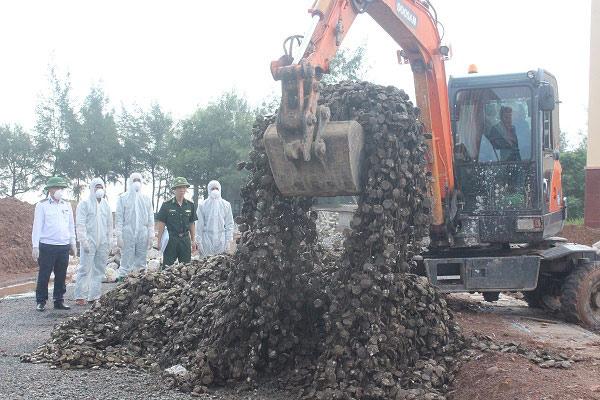 Quảng Ninh: Tiêu hủy 10 tấn hàu giống nhập lậu từ Trung Quốc - 1