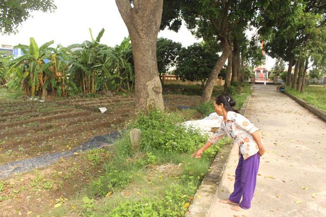 Bé gái sơ sinh bị bỏ rơi trước cổng nghĩa trang liệt sĩ - 1