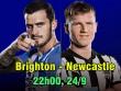 Brighton - Newcastle: Top 4  & amp; giấc mơ thiên đường