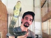 Phi thường - kỳ quặc - Bị rắn độc cắn, livestream cảnh chết dần và gửi lời nhắn vợ
