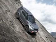 Tin tức ô tô - Land Rover Discovery SVX: Dành cho tín đồ off-road